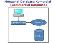 Database Komersial